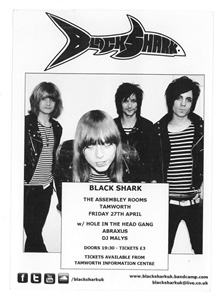 black shark flyer